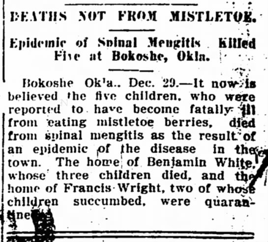 """Deaths Not From Mistletoe,"" Iola (Kan.) Register, 12-29-1910"