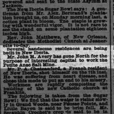 The Times-Picayune (New Orleans) May 16, 1880