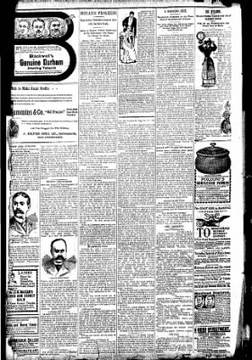 Logansport Pharos-Tribune from Logansport, Indiana on August 9, 1896 · Page 10